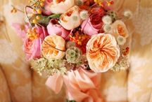 2012 Pantone TANGERINE / by Inspired Grace Weddings