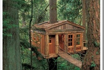 Treehouses / by Laura and Toffy