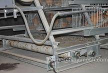 Conveyor Belt Type Manure Removal