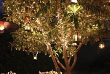 Outdoor decorating / by Jennifer Luzier