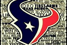 Houston Texans / The Houston Texans football team.