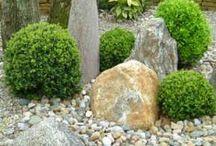 zahrada skalky