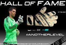 HALL OF FAME: Tally Hall…#ANOTHERLEVEL