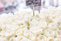 Virágok, kompozíciók......