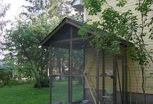 Cat's outdoor recreation room