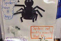 Spiders-preschool unit