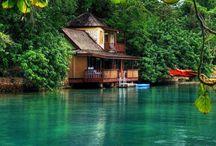 tropics house