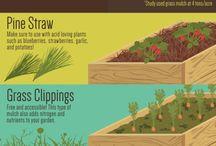 Mulczowanie+kompost