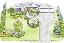 New Yard / by Ashley Goetz