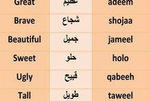 ::::Arabic::::