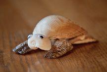 Kreatív kagylók