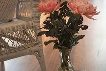 Gorgeous florals for fabulous decor / Flowers that will add that extra spark to any room in your home