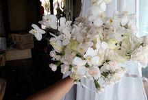 casamentos we do yanez