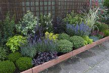 Gardening / by Lisa Turner