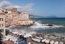 #Flores en #Genova #Italia / This is Genova: colour, sea, culture