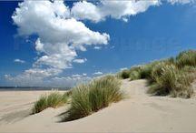 Maritimes / Sommer, Strand, Sand und Meer