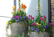 Blomsterkrukker