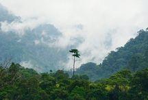 Sumatera Barat - Landscape