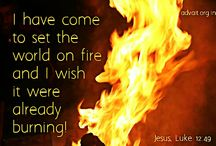Quote ~Bible