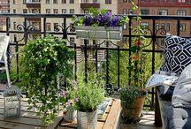 Μπαλκόνι-Κήπος