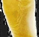 NOSHIT
