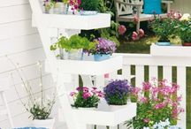Flowers, Gardens & Balkonys