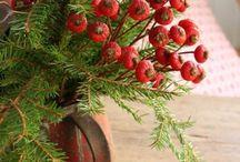 Christmas & Yule