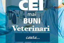 Veterinarul Pet / Sanatatea si ingrijirea animalelor de companie