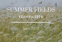 Summer fields moments / Visual storytelling with photography and poems.