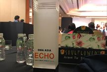 Best Website Design & Development in DMA ASIA ECHO Awards 2017