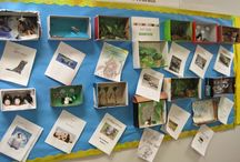 PY3 Sharing the Planet