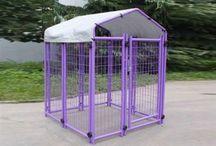 Entry Level Dog Kennels / Affordable kennels.