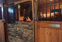 New Stable