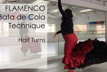 Flamenco Lessons