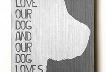 Pet Love <3 / by Cassie Faulding