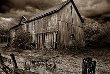 Barns / by Corrine Stewart