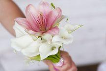 Wedding Ideas / by Debra McDonald