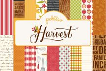 Harvest Collection / Put on your coziest sweater and experience the seasonal delights of Harvest, a new collection from Pebbles. Focus on delicious home cooking, family time, friendship, fall flowers and foliage in a warm palette of scarlet red, burnt orange, leafy green and chestnut.  / by Pebbles Inc.