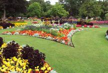 garden BG