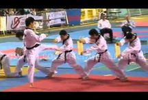 Martial arts / Martial arts, hapkido, taekwondo, wing chun, karate, judo, jiujitsu