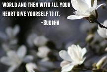 Buddha&Co. / Buddha, buddhism, spirituality, meditation, wisdom