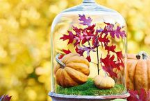 Fall Decor & Decorating Ideas / Fun and Creative Ideas for Fall Decor and Decorations to get you in the mood this Autumn. Find a variety of ideas from Do-it Yourself, Designer Wall Decals, and Items we just love! All of this to transform your house into a home for your loved ones.