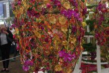 Chelsea Flower Show / Flower Power everywhere!