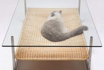 Cat Friendly Upgrades / Examples of furniture, home upgrades, etc. that are provided for our indoor cats to help keep them physically and mentally fit, healthy and happy.