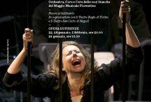 Opera di Firenze