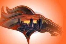Denver Broncos / by Karissa Peterson