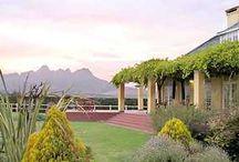South African Love / by Dawn Schurman