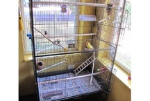 Prevue Pet Products Wrought Iron Flight Cage / http://bird-cages-forsale.com