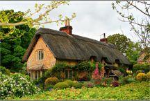 Along the Garden Path / by Trishy Kent