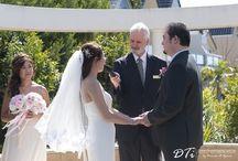 Peter Champion - Wedding Celebrant / Wedding Celebrant